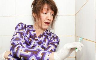 Как очистить швы между плиткой в ванной — разные средства и рецепты решения проблемы